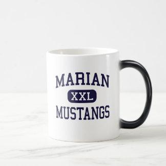 - Mustangos - alto mariano - Framingham Taza