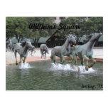 Mustangos de Las Colinas # 27 Postales