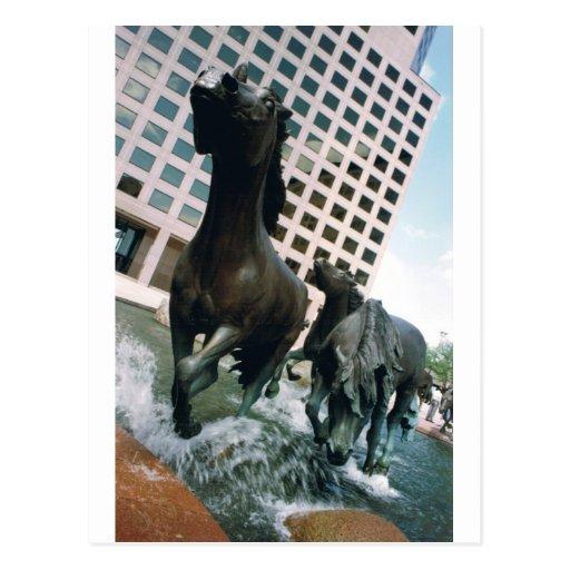 Mustangos de Las Colinas Tarjeta Postal