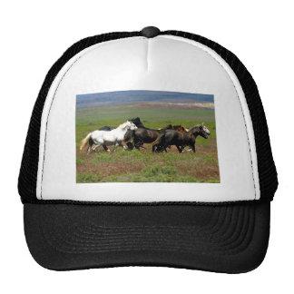 Mustangos Gorros Bordados