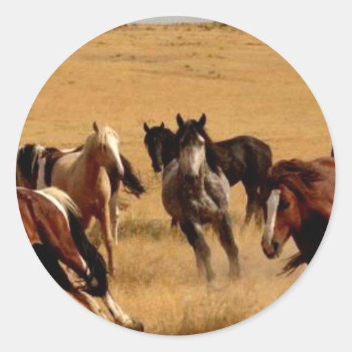 Mustangos Pegatinas Redondas