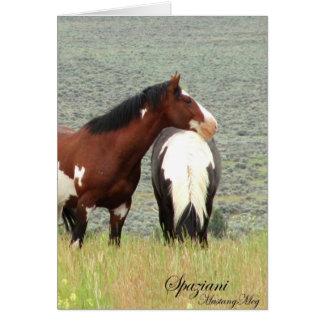 Mustangos salvajes del americano de Card~ Tarjeta De Felicitación