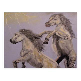 """Mustangs"" Horizontal Postcard"