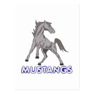 Mustangs Mascot Postcard