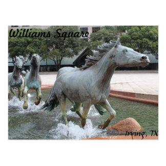 Mustangs of Las Colinas # 10 Postcard
