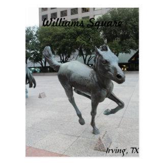 Mustangs of Las Colinas # 11 Postcard