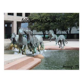 Mustangs of Las Colinas # 12 Postcard