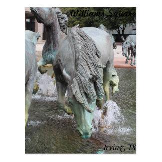 Mustangs of Las Colinas # 15 Postcard