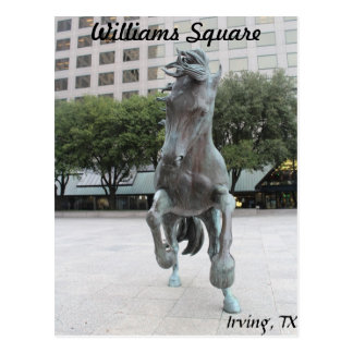 Mustangs of Las Colinas # 16 Postcard