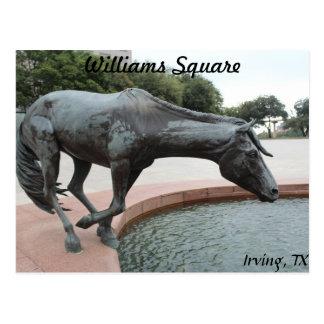 Mustangs of Las Colinas # 1 Postcard