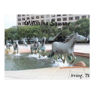 Mustangs of Las Colinas # 21 Postcard