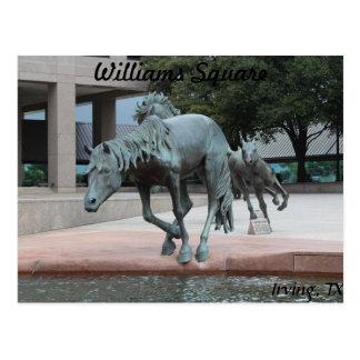 Mustangs of Las Colinas # 23 Postcard