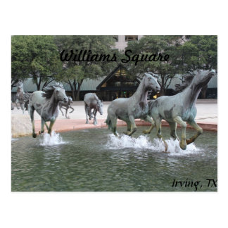 Mustangs of Las Colinas # 27 Postcard