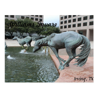 Mustangs of Las Colinas # 28 Postcard