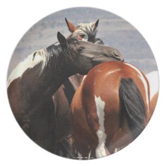 MustangWILD Unbreakable Plates