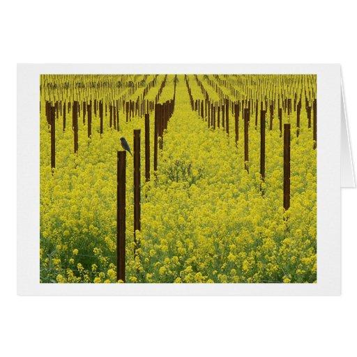 Mustard Field Card