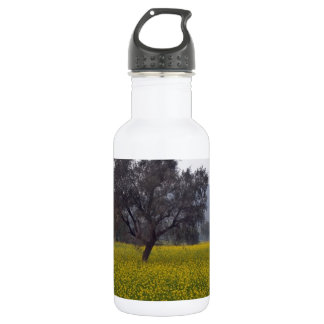 Mustard field with tree standing in middle stainless steel water bottle