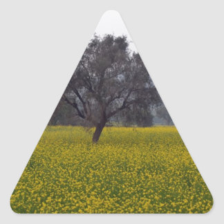 Mustard field with tree standing in middle triangle stickers