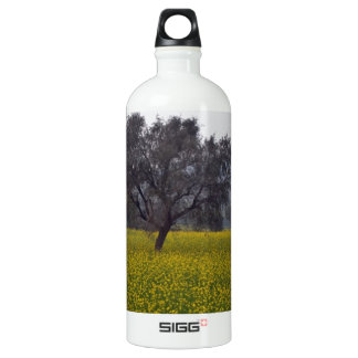 Mustard fields with their yellow flowers water bottle