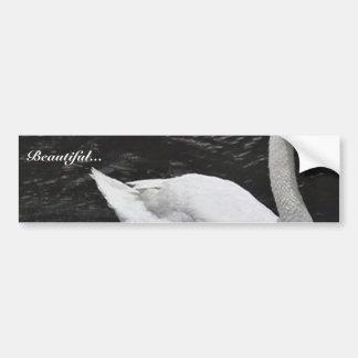 Mute Swan Car Bumper Sticker