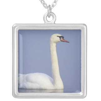 Mute Swan, Cygnus olor, adult in fog, Square Pendant Necklace