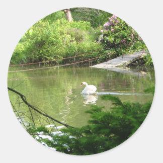 Mute Swan (Cygnus Olor) by Footbridge Classic Round Sticker