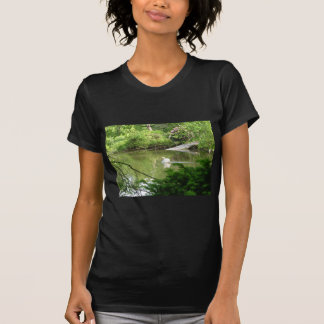 Mute Swan (Cygnus Olor) by Footbridge T-Shirt