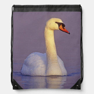 Mute Swan, Cygnus olor,male, Unterlunkhofen, Drawstring Bag