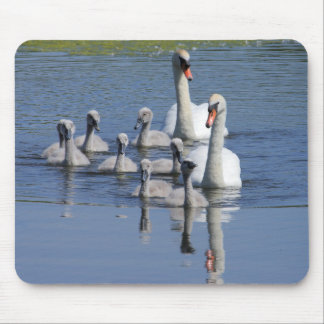 Mute Swan Family Mouse Pad