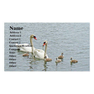 Mute Swan Famly Business Card Template