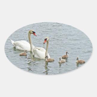 Mute Swan Famly Oval Sticker