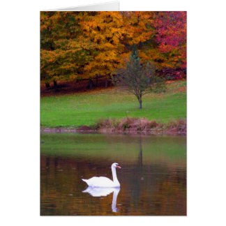 Mute Swan in Autumn Card