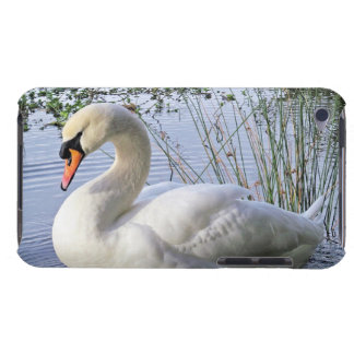 Mute Swan iPod Touch Case