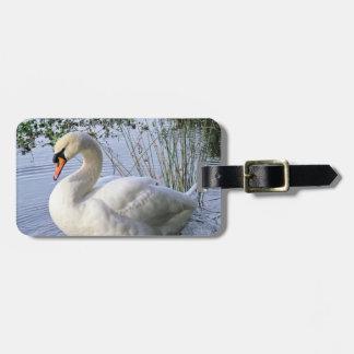 Mute Swan Luggage Tag