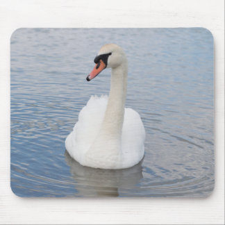 Mute Swan Mouse Pad