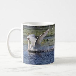 Mute swan on pond coffee mug