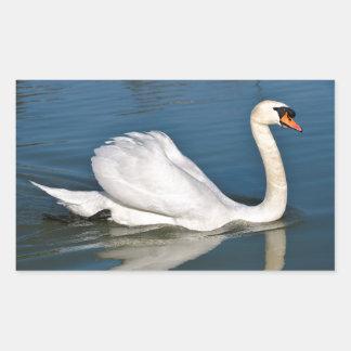 Mute swan on water rectangle sticker