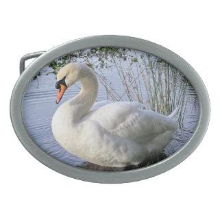 Mute Swan Oval Belt Buckle