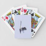 Mute Swan Poker Cards