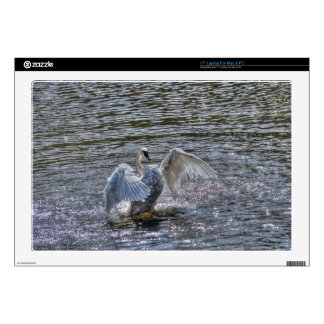 "Mute Swan Preening in Sunlit Lake Waters Decals For 17"" Laptops"
