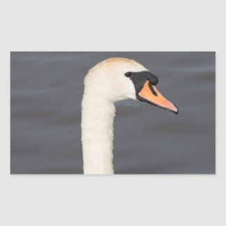 Mute Swan Rectangular Sticker
