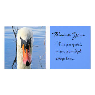 Mute Swan (Thank You) Card