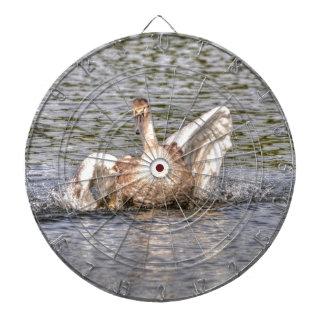 Mute Swan Wildlife Waterfowl Photo Dart Boards