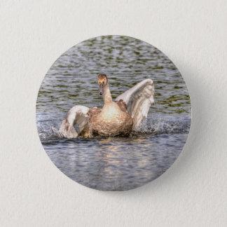 Mute Swan Wildlife Waterfowl Photo Pinback Button