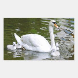 Mute swan with nestlings on water rectangular sticker