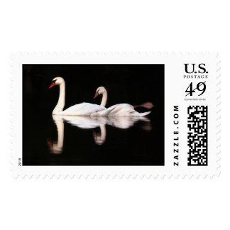 Mute Swans Stamps