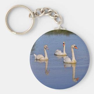 Mute swans swimming keychain