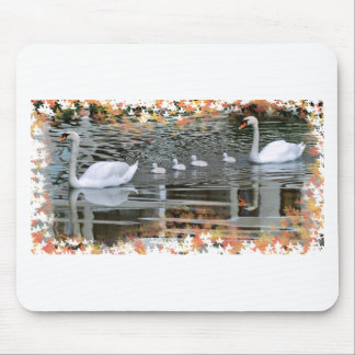 Mute swans with nestlings on water mouse pad