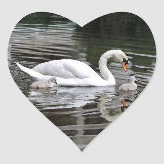 Mute swans with nestlings on water stickers