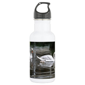 Mute swans with nestlings on water water bottle